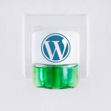 Don't let a dodgy WordPress plugin take down your website. Make the Perfect Leap to managed WordPress hosting